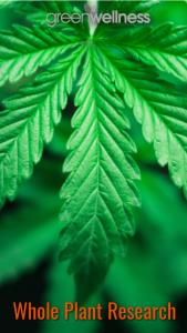 Whole Plant Image