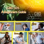 CBD 101 Blog